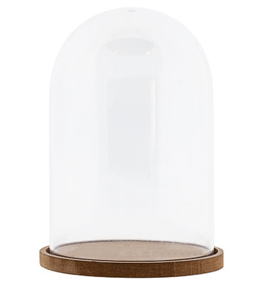 Plastic Dome with mdf baseplate